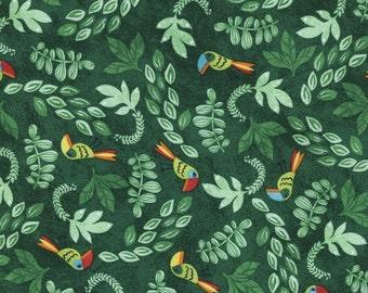 Toucan Fabric - 1 Yard Cut - Timeless Treasures Fabric - Cotton Fabric - Quilting Fabric