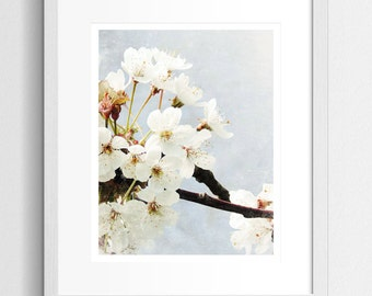 Blossom Photography, Spring Photography, Blossom Wall Art, Blossom Art Print, Nature Prints, Nature Photography, Nature Art, Shabby Chic