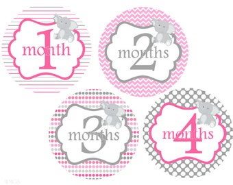 Baby Month Stickers Baby Girl Month Stickers Pink Gray Elephants Milestone Stickers Baby Monthly Stickers Baby Girl Stickers