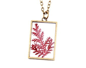 Necklace fern