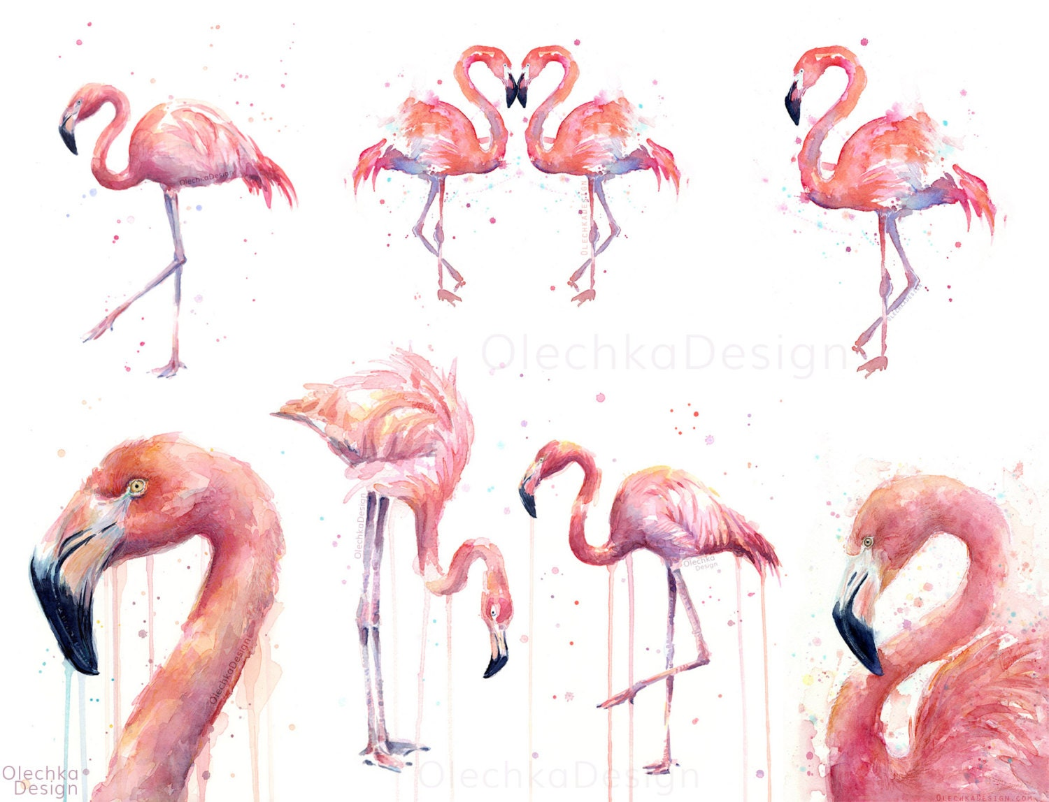Pink Flamingo Watercolor Painting Art Print Giclee Bird Animal