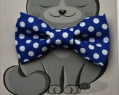 Cat Bowtie, Dog Bow Tie, Collar Accessory, Royal Blue, White, Polka Dots, Small Animal, Kitty Bow Tie, Gift for Cat, Pet Bow Tie