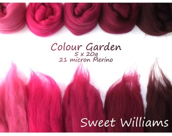 Deep pink Merino Shade sets - 21 micron Merino wool - 100g - 3.5oz - 5 x 20g - Colour Garden - SWEET WILLIAMS