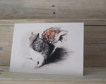 Blank Squirrel Greeting Card