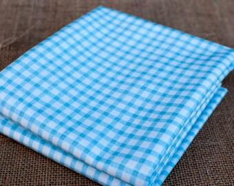 Fat Quarter ~ Penny Rose Fabrics ~ Riley Blake ~ Paper Dolls Bakery ~ Blue Gingham
