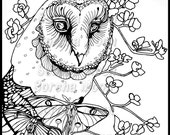Owl Moon Pilgrim Coloring Page for Adults