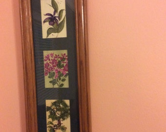 Trio of flowers, framed in oak