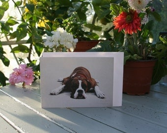 Luca - A6 Blank greetings cards of a Boxer drawn by Imogen Man