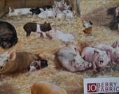Pig Fabric, Farm Pig Animals by Elizabeth Studio, Quilt or Craft Fabric, Fabric by the Yard.