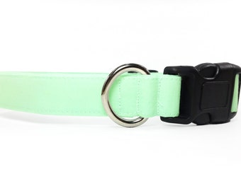 Mint green dog collar & cat collar - adjustable with bell (optional)