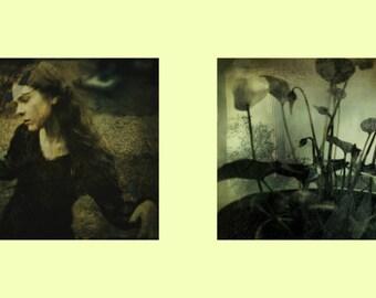 Ophelia later, photographic print