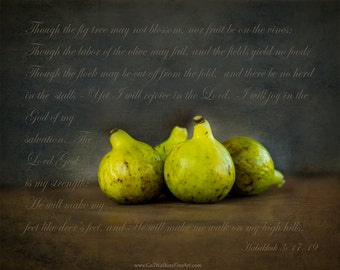 Figs Still Life Photograph, Still Life Fine Art Print or Canvas, Kitchen Decor, Rustic Decor, Farmhouse Wall Decor