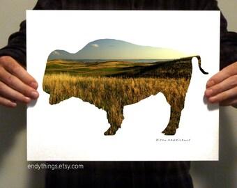 Bison Habitat Print - One