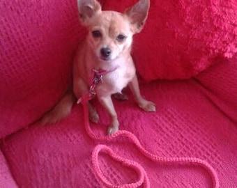Hot Pink Leash, Small Dog Leash, Diva Dog, Four Foot Leash, Pink Leash, Valentine gift, Dog Mom, Chihuahua leash, sale