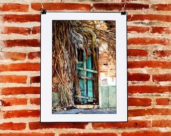 Mexican Rustic and Urban Door Wall Decor, Instant Download Photography, Rustic Door Wall Art, Mexican Decor, Fine Art Nature Photography