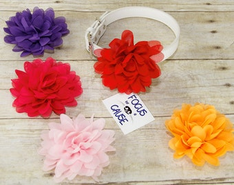Chiffon Mum Dog Collar Flower Accessory, (Collar not included), Wedding Flower, Pet Photographer, Prop, Collar Accessory, Focus for a Cause