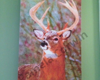 """Whitetail deer buck in colorful snow art print on canvas 14x20"""": Deer hunting art Christmas buck deer"""