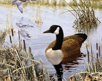 """Goose & Ducks REALTREE- By Sykel - 100%Cotton, 36""""x44"""" Panel"""