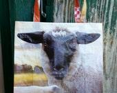 Sheep  Bag Tote Bag Recycled Feed Bag (Crochet/knitting bag) Rug Hooking bag, Herding Trials  Sheep Herding( lamb, wool, project)