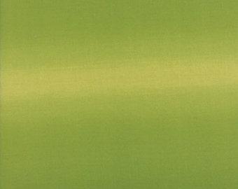 1/2 Yard - Ombre - Avocado - V and Co - Vanessa Christenson - Moda Fabrics - Fabric Yardage - 10800- 52