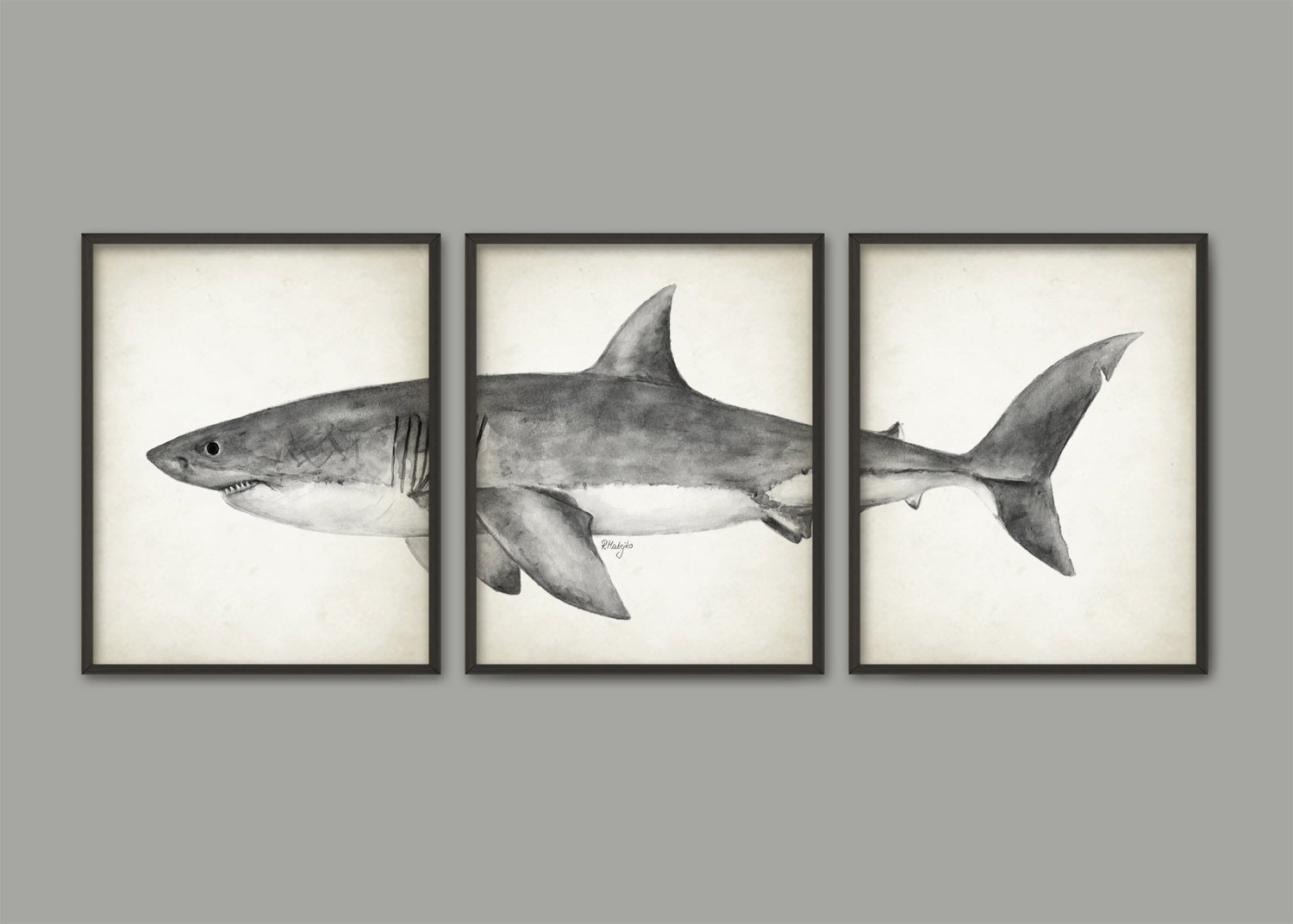Shark Wall Art great white shark watercolor art poster set of 3 shark art