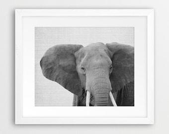 Elephant Print, Elephant Wall Art, Safari  Animals, Elephant Photo, Black And White Nursery Print, Animal Wall Art, Kids Gift Printable Art