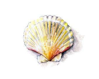 "Seashell Painting 2 - Print from Original Watercolor Painting, ""Sea Scallop"", Beach Decor, Sea Shell, Ocean, Sea Shell Art"