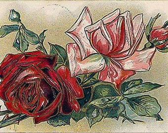 Vtg 1910 Postcard Red Pink Roses Love Perfect Happiness