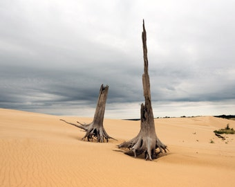 Silver lake Sand Dunes 2