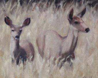 Deer - fawn - wildlife - oil painting - original art - Pamela Poll