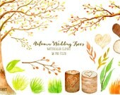 Wedding clipart  watercolor autumn beech tree beech tree in fall color  printable instant download