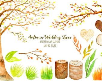 Wedding clipart - watercolor autumn beech tree, beech tree in fall color,  printable instant download
