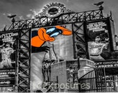 Baltimore Orioles Stadium 10x13  black matted