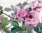 "Rosa Lavande - An Original Watercolor Painting by Linda Henry - 5""x 7"" - Ready to Frame with a free White Mat (Rose #7)"