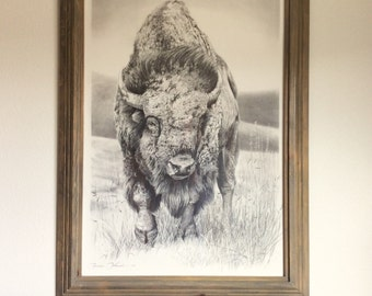 Buffalo, bison, pencil drawing, animal L.E.