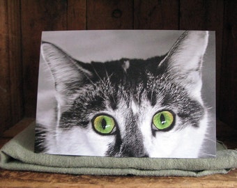 Cat Greeting Card - She Only Has Eyes For You - Cat With Green Eyes - Cat Lover's Card - Cat Portrait - Cat Photography - Mesmer-Eyes