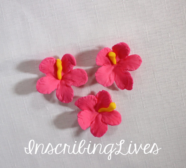 Fondant Flowers 12pcs Hibiscus Edible Fiesta Flowers Luau Cake