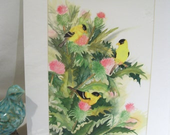 Golden Finch with Thistle Artwork by Sue Klaus,Birds and Flowers