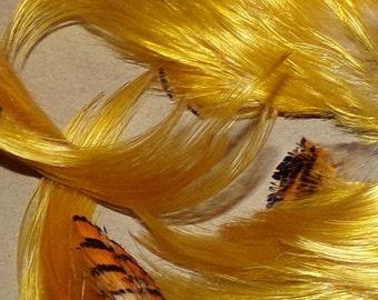 Golden Pheasant Crest