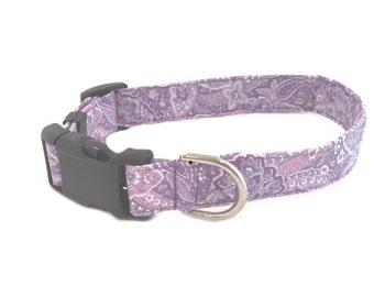 Dog Collar Lavender Purple Paisley