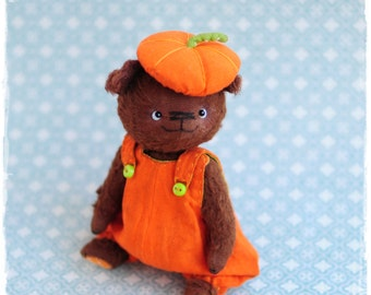 dog teddy Pumpkin