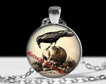Human skull pendant, raven jewelry, occult jewellery, vintage animal necklace, anatomical choker #274