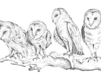 Pointillism Illustration Owls