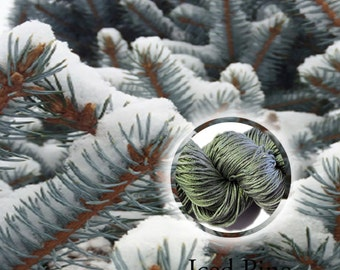 December Yarn of the Month - Iced Pine - Hand Dyed Silk Yarn - DK Weight
