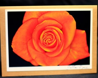 """All occasion photo card  """"Yellow rose"""""""
