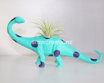 Custom Dinosaur Planter with Air Plant Included Room Decor- Dorm Room Decor