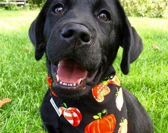 Pumpkins Bandana Orange on Black - Frightful & Delightful Glow In The Dark - Reversible Pet Scarf - Dog Lover Gift by Three Spoiled Dogs