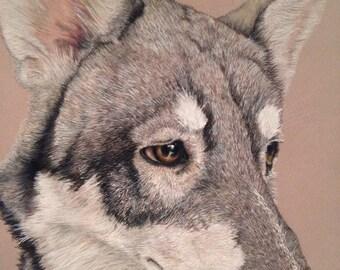 custom pet portrait, *single subject *