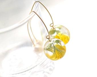 Real Bird's-Foot Trefoil in Resin with Freshwater Pearls, 14Kgf V-Hook Earrings