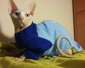Blue sweater for Sphynx.